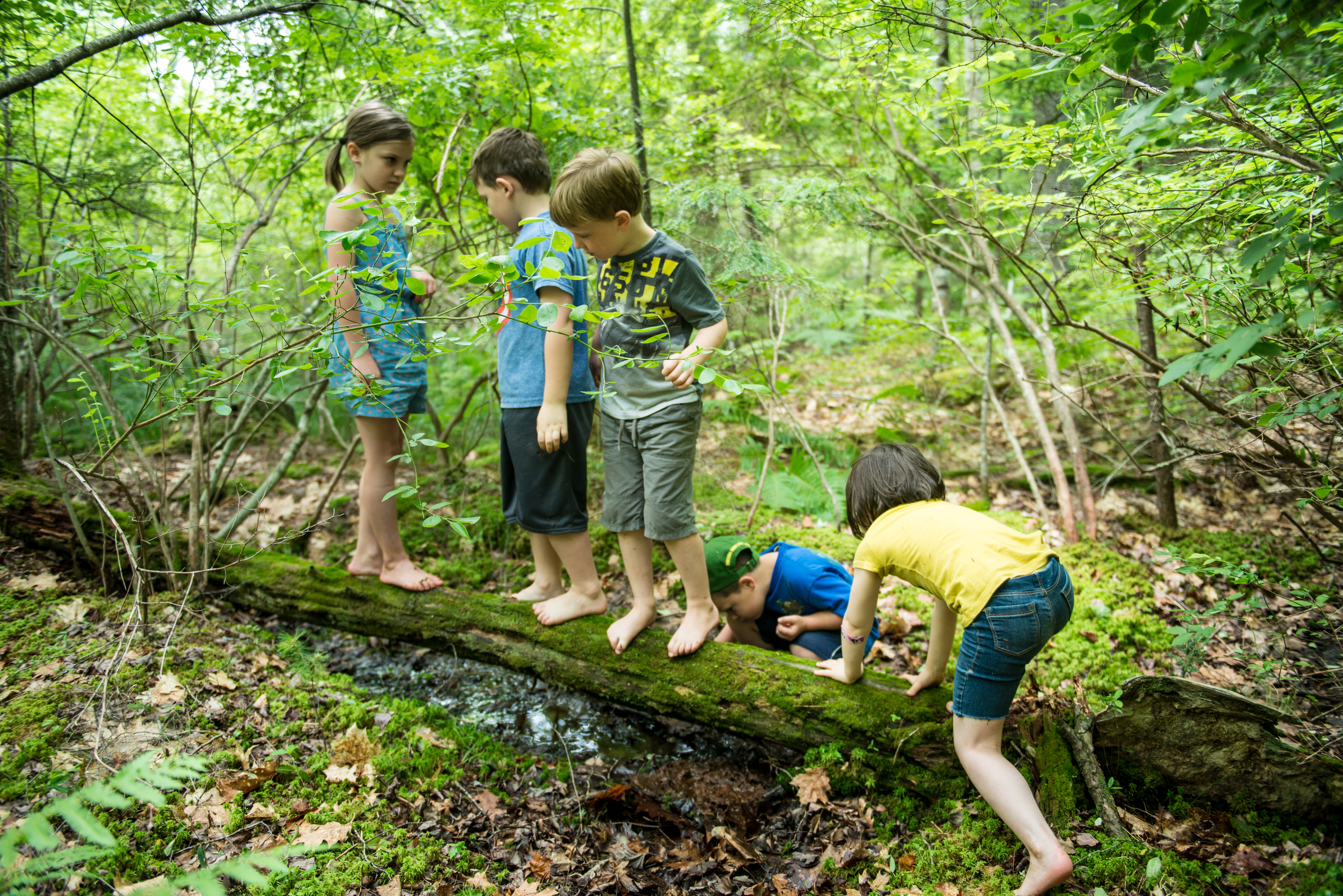 Little Wild Ones – TimberNook of Barrington, NH