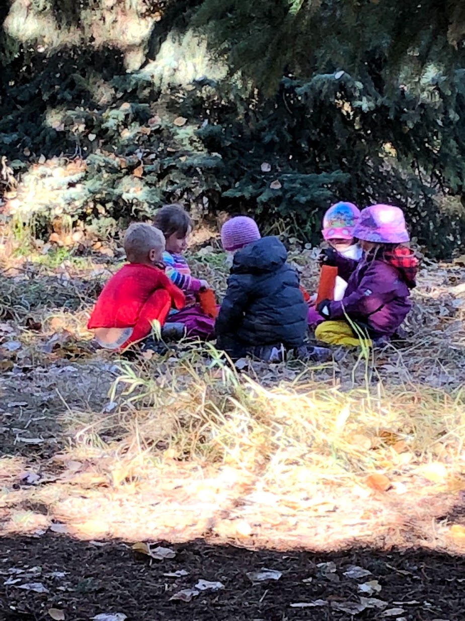 Wild Ones – Fall Homeschool program- 1 SPOT LEFT!