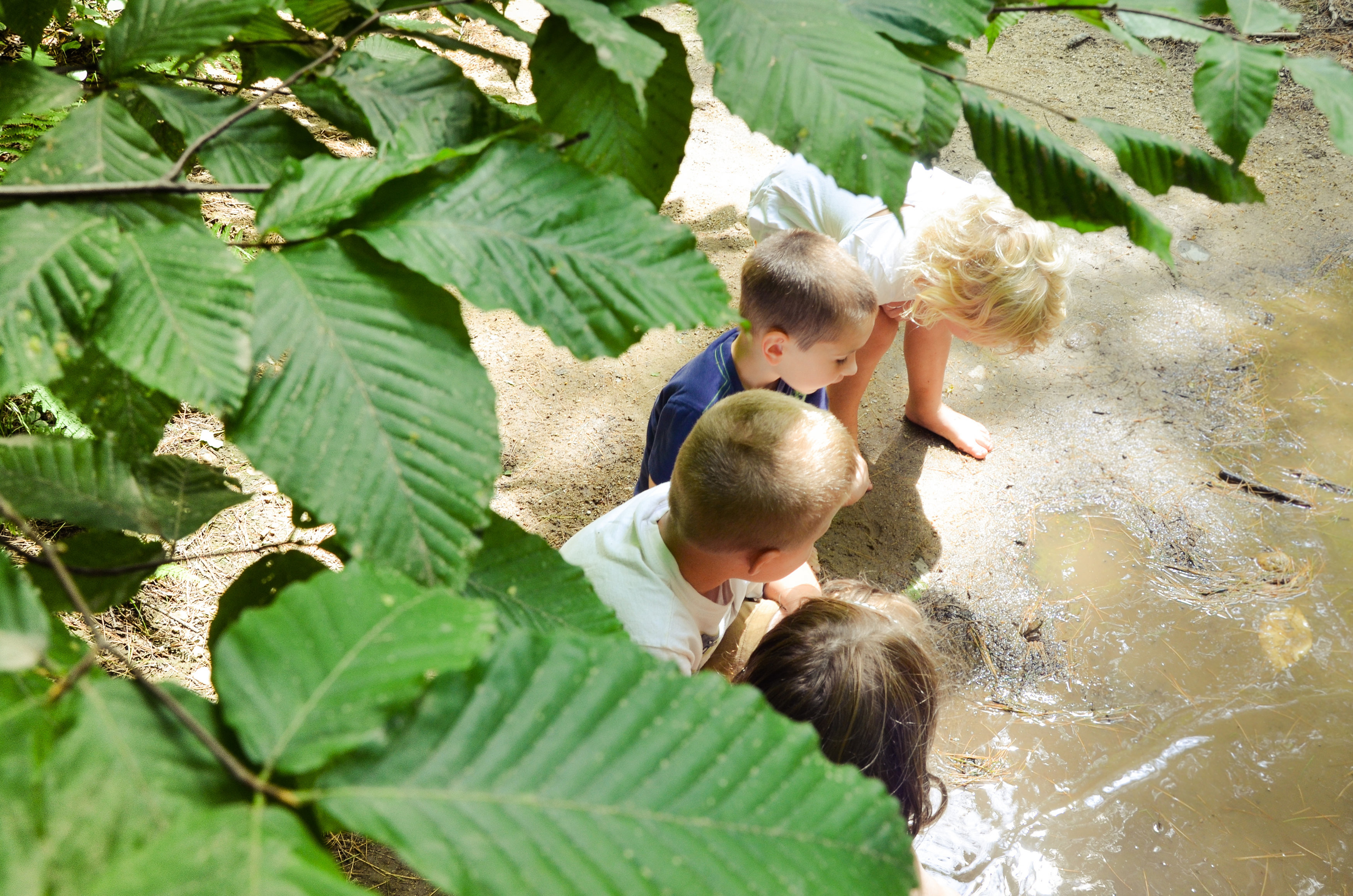Little Wild Ones - TimberNook of Greater Portland, Maine