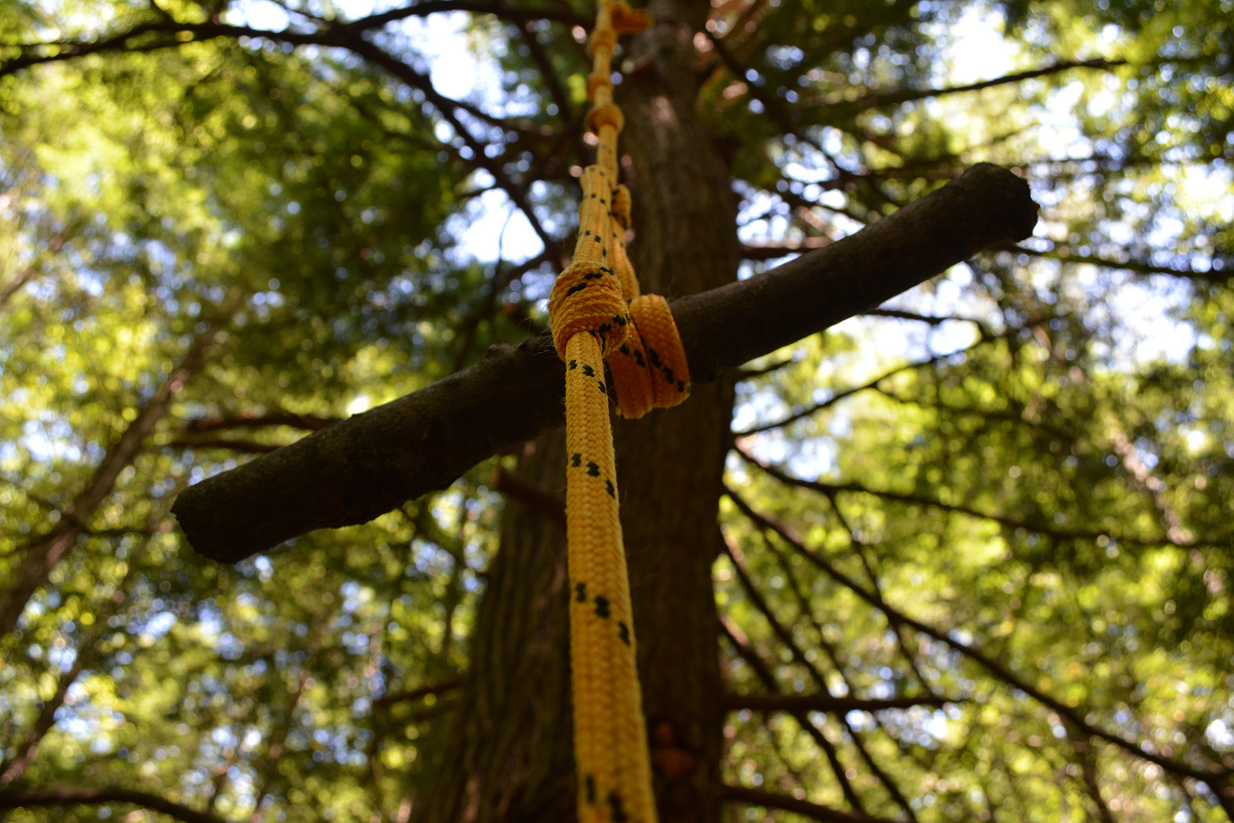 Woodland Tinkering – TimberNook of Greater Portland, Maine