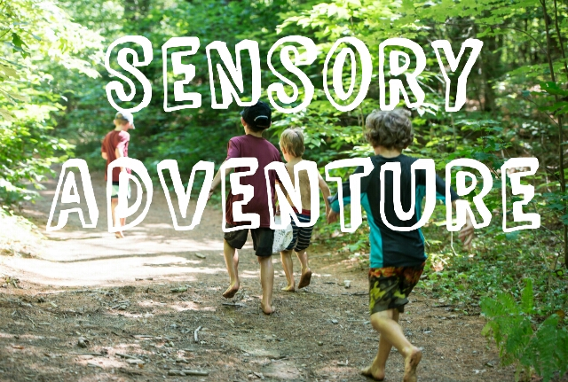 Sensory Adventures - TimberNook of Greater Burlington