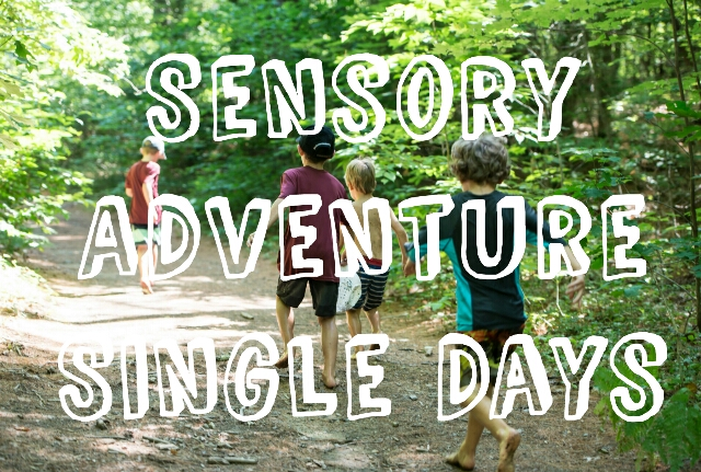 Sensory Adventures: Single Days - TimberNook of Greater Burlington