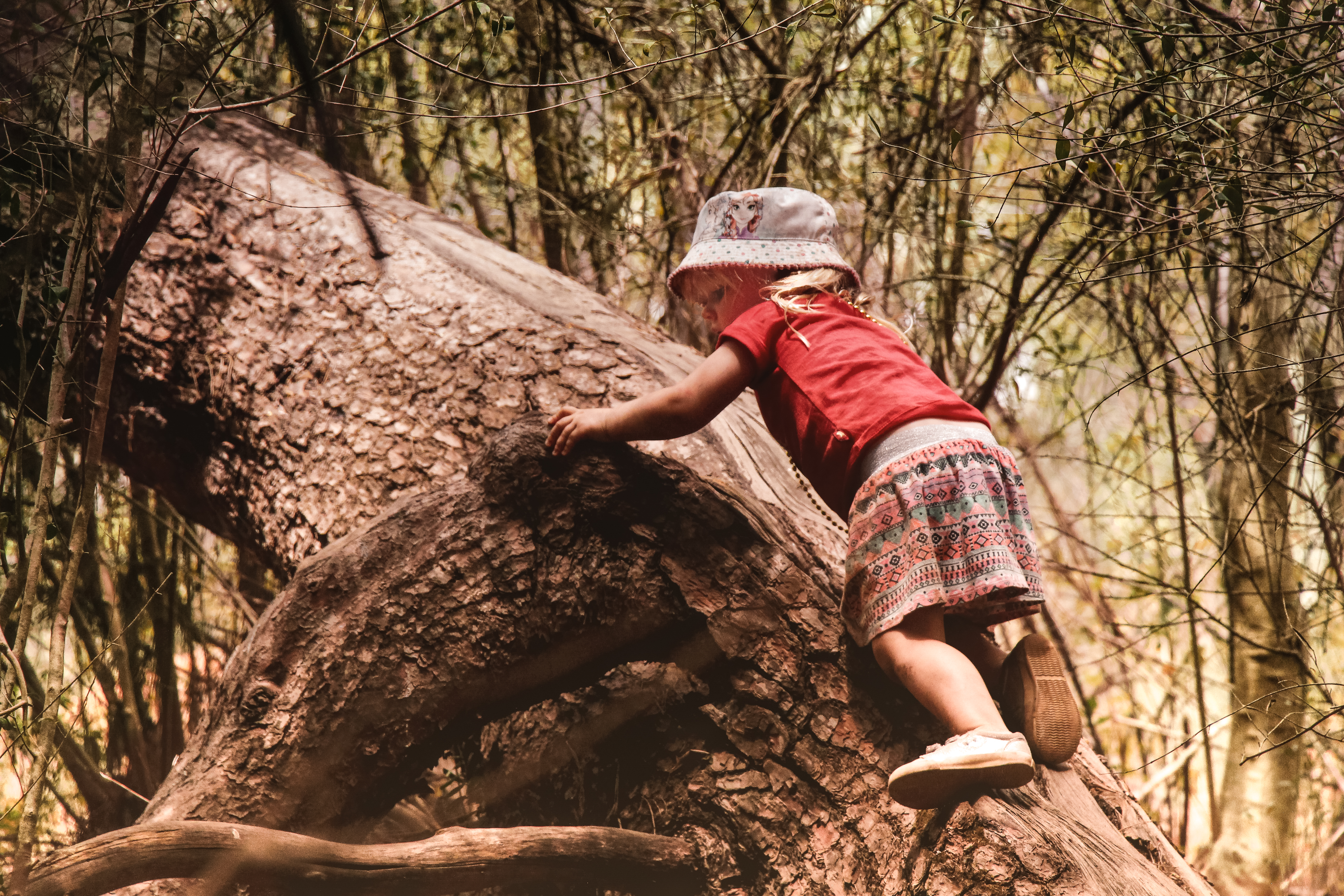 Tiny Ones (Full Term 2 Registration) - TimberNook South Adelaide