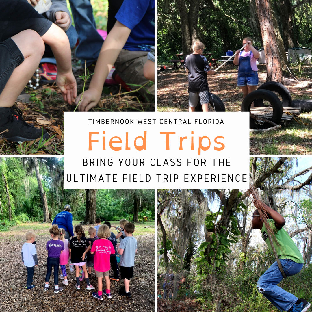 Field Trips - TimberNook West Central Florida