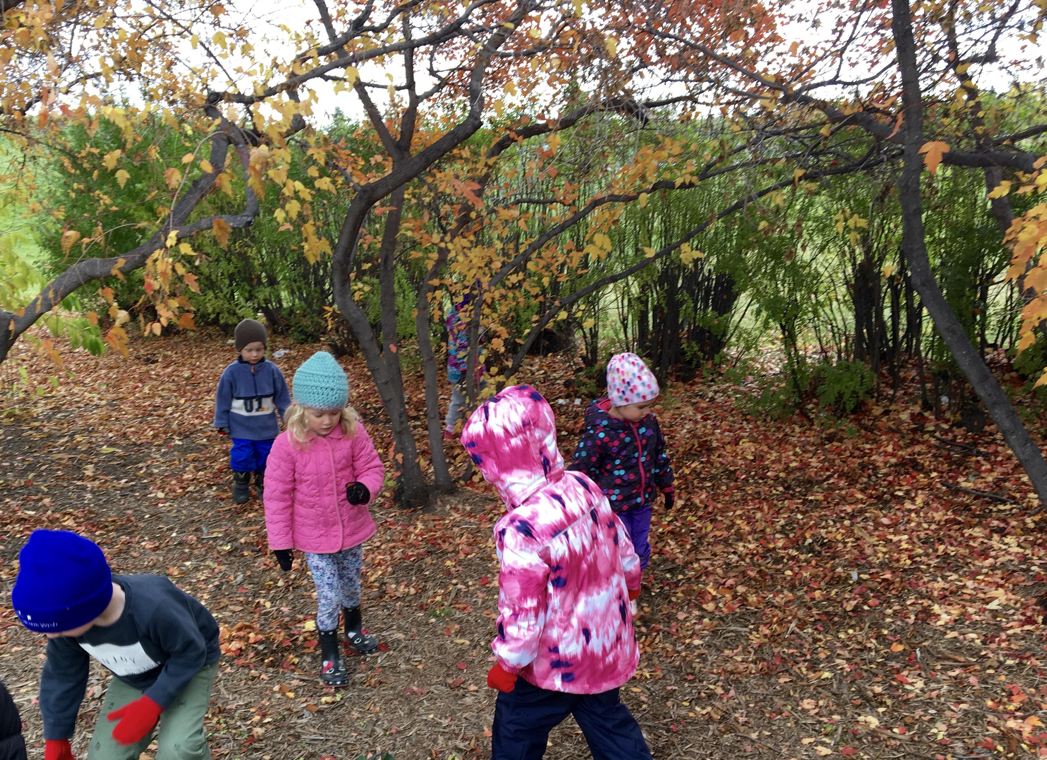 Field Trips – TimberNook Saskatoon