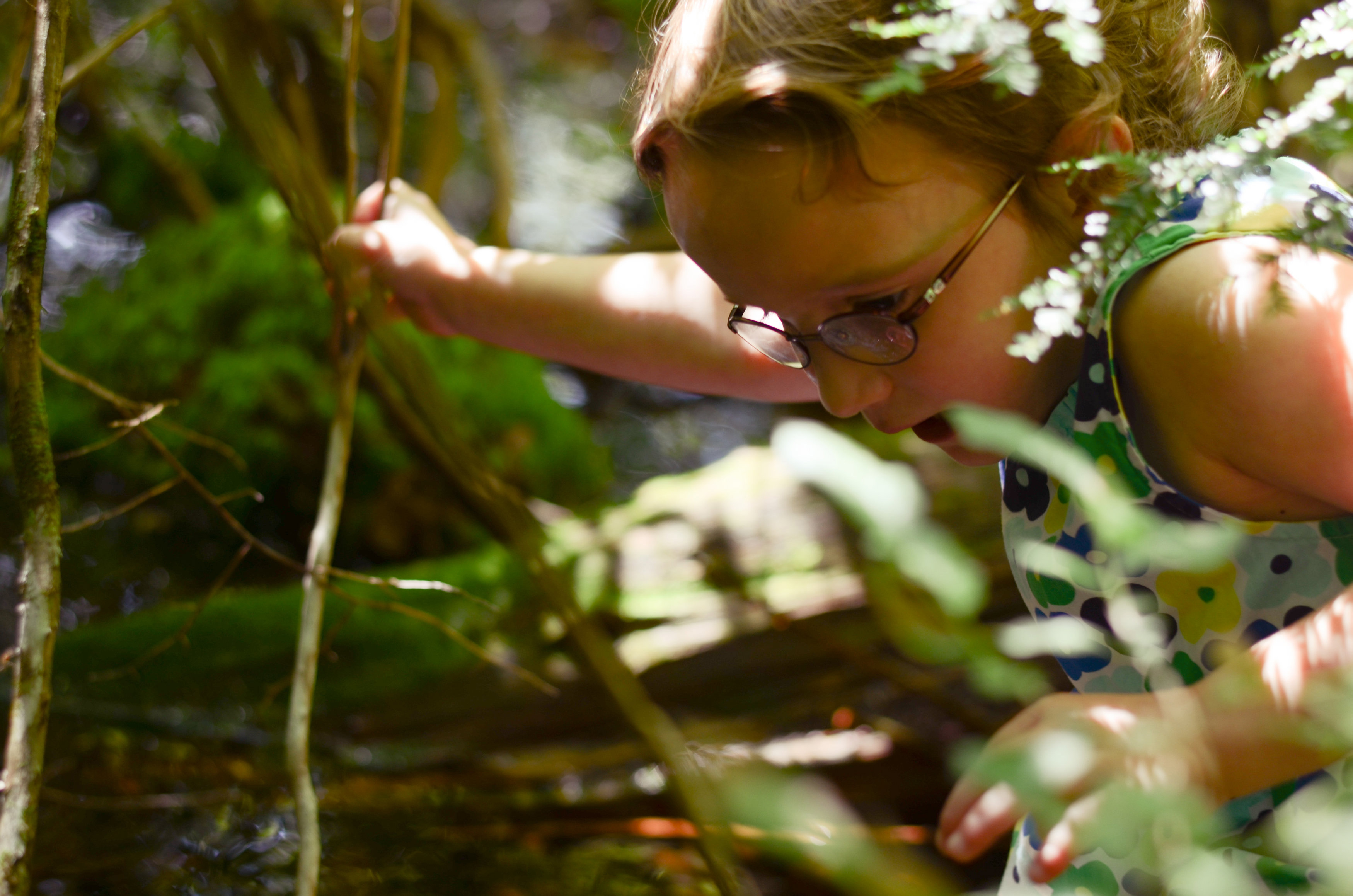 Little Wild Ones - TimberNook Middlesex County