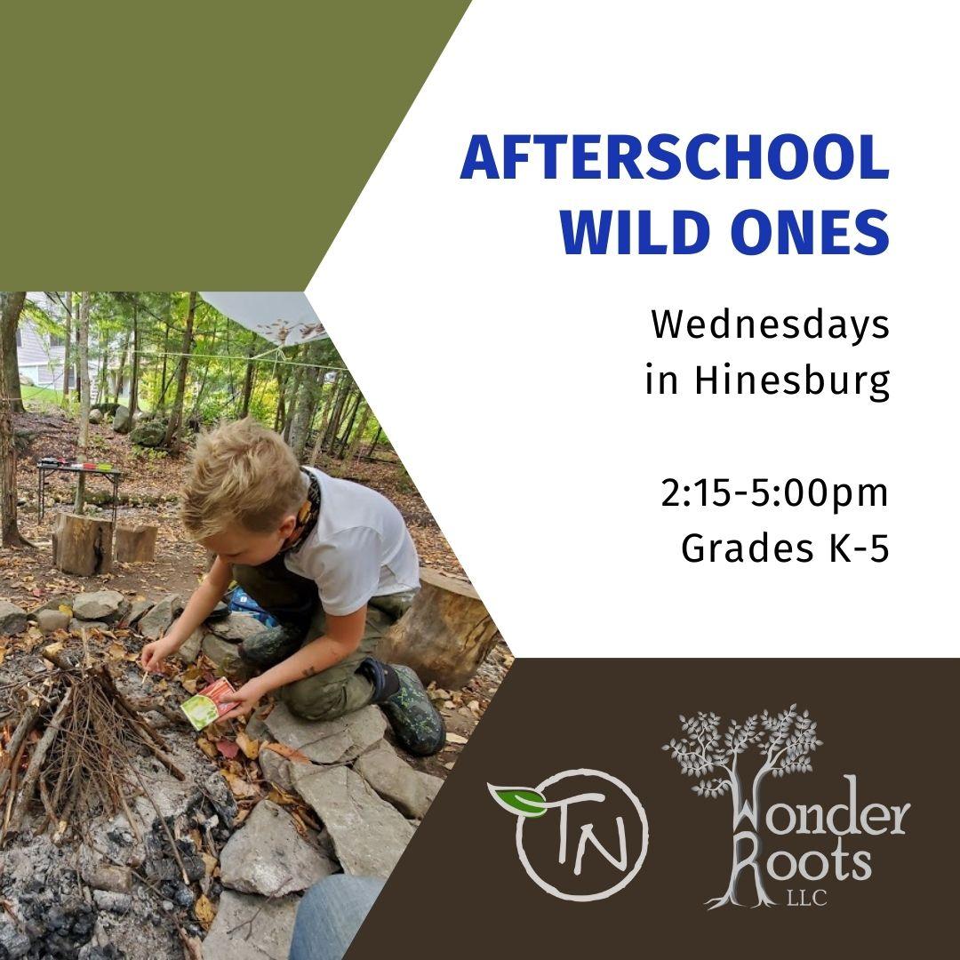 Afterschool Wild Ones - TimberNook of Greater Burlington