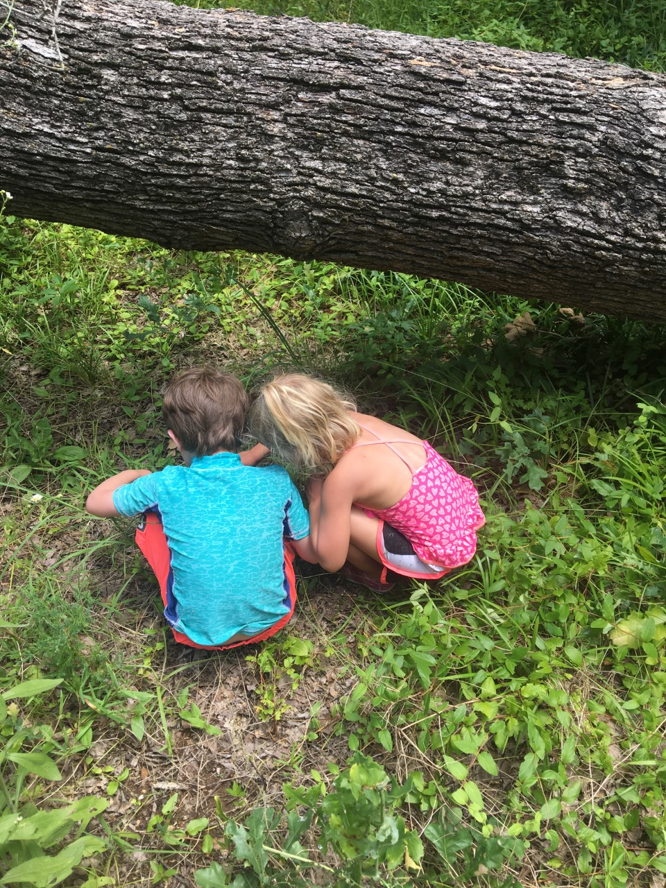 Tiny Ones/Little Wild Ones ONE DAY TRIAL- TimberNook North Texas