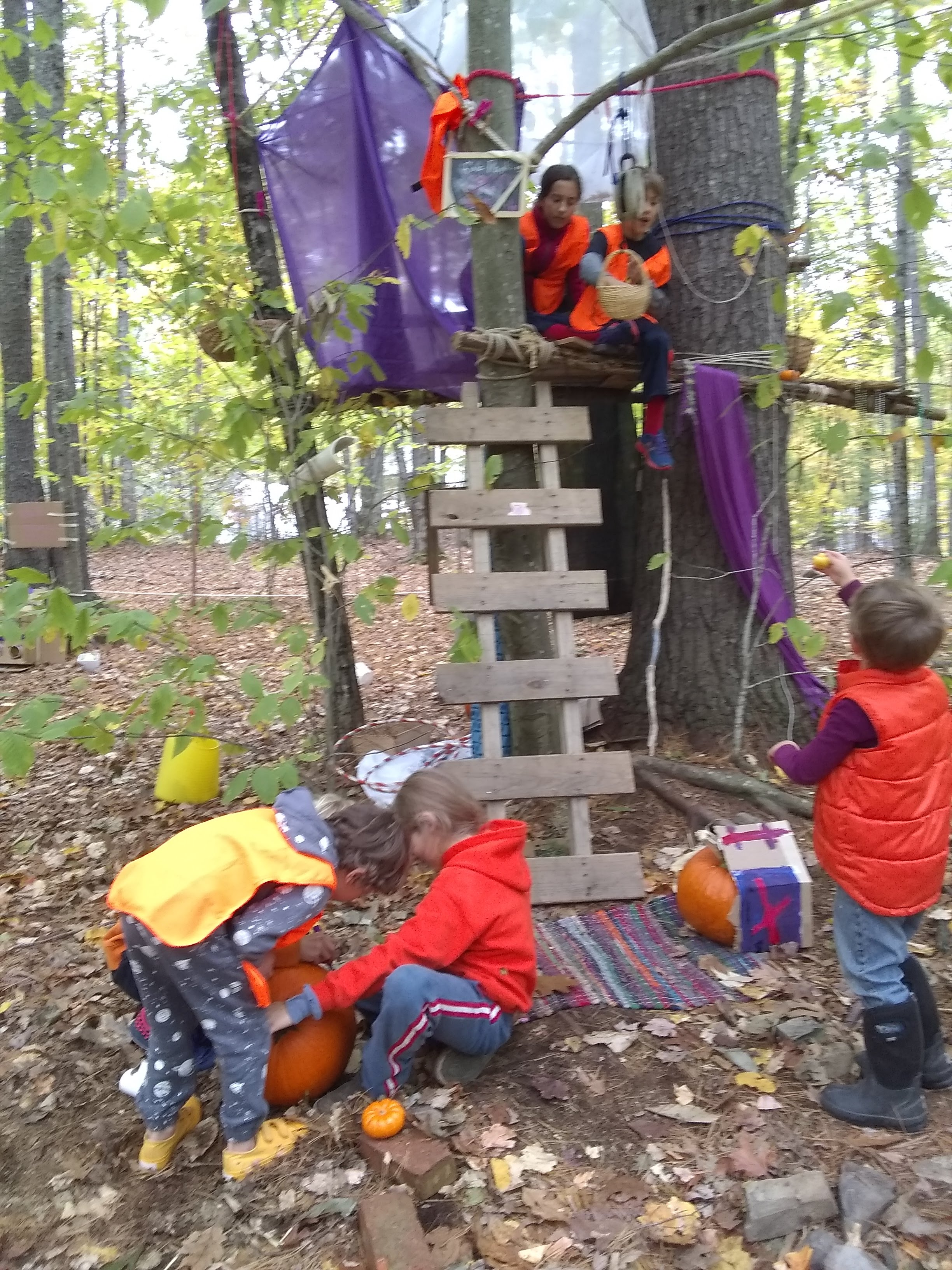 Veterans Day Camp – TimberNook of Greater Portland, Maine