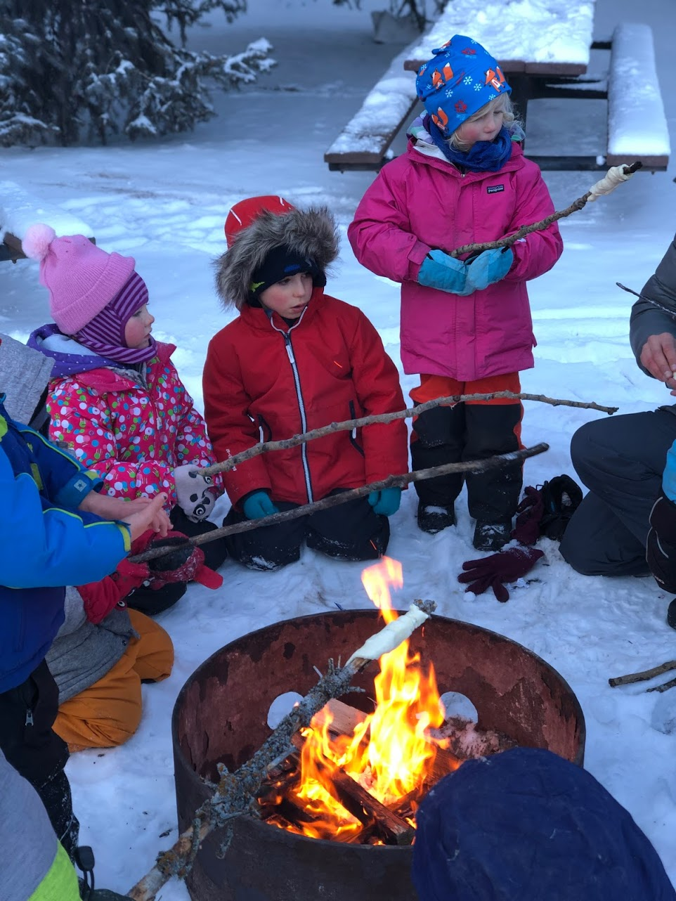 Winter Wild Ones (homeschool program)