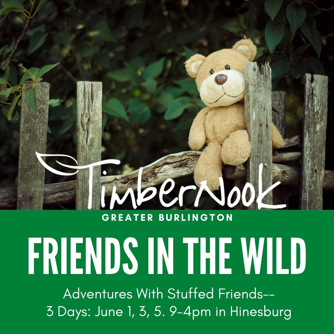 Friends in the Wild - TimberNook of Greater Burlington