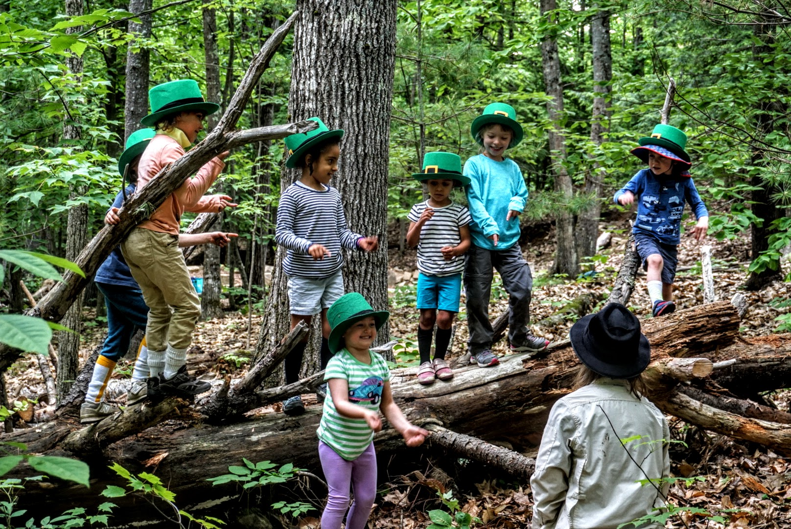 Storybook Summer Camp - TimberNook of Greater Portland, Maine