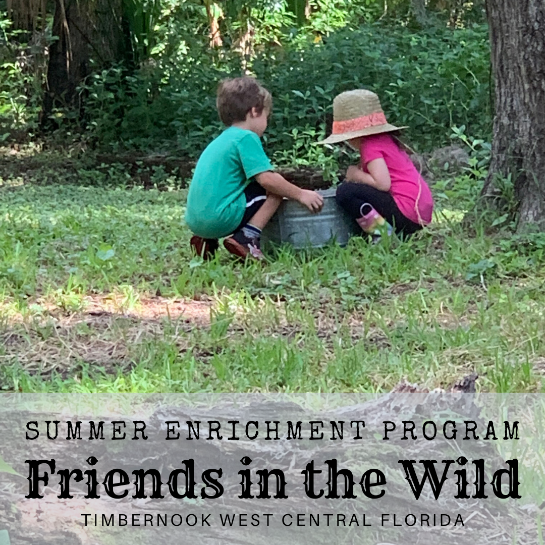 Friends in the Wild - June 2-5 - TimberNook West Central Florida