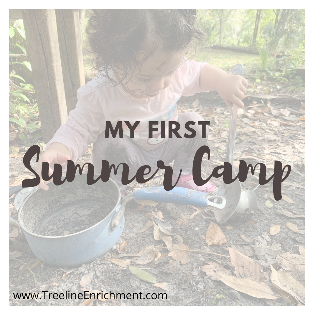 My First Summer Camp - Tiny Ones - TimberNook West Central Florida