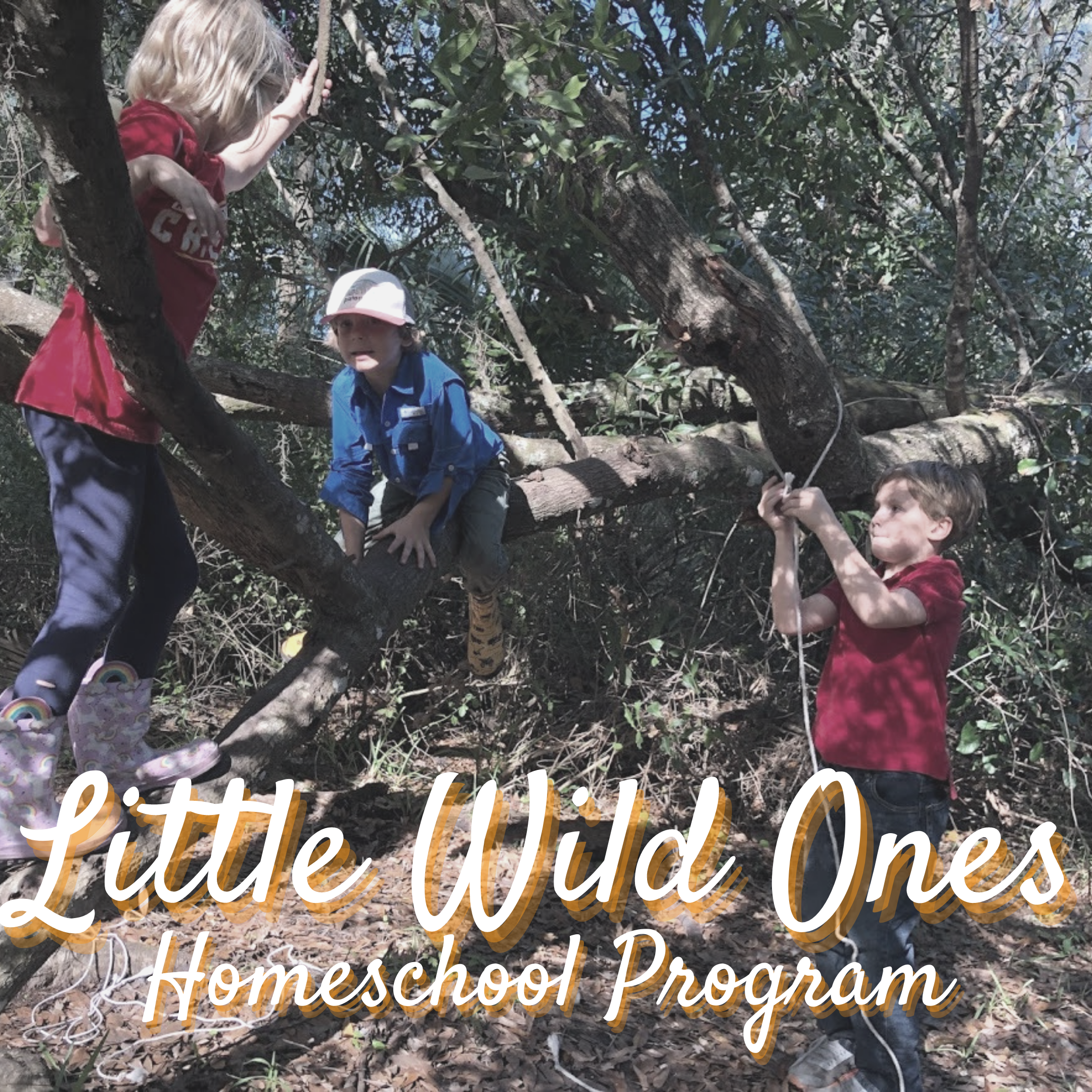 Little Wild Ones - 6-Week Session - TimberNook West Central Florida
