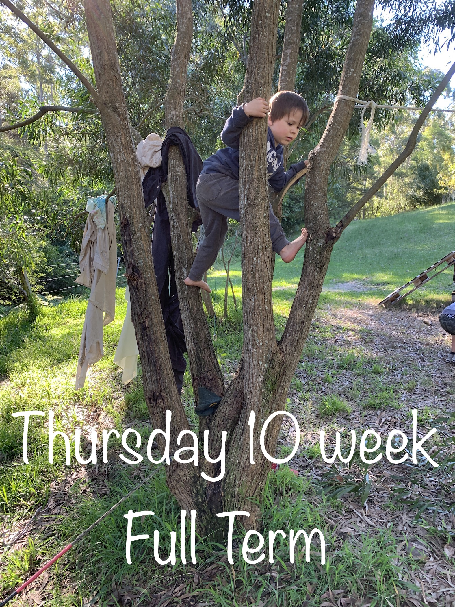 Full Term 9 Week Thursday Tiny Ones - Inspired EC