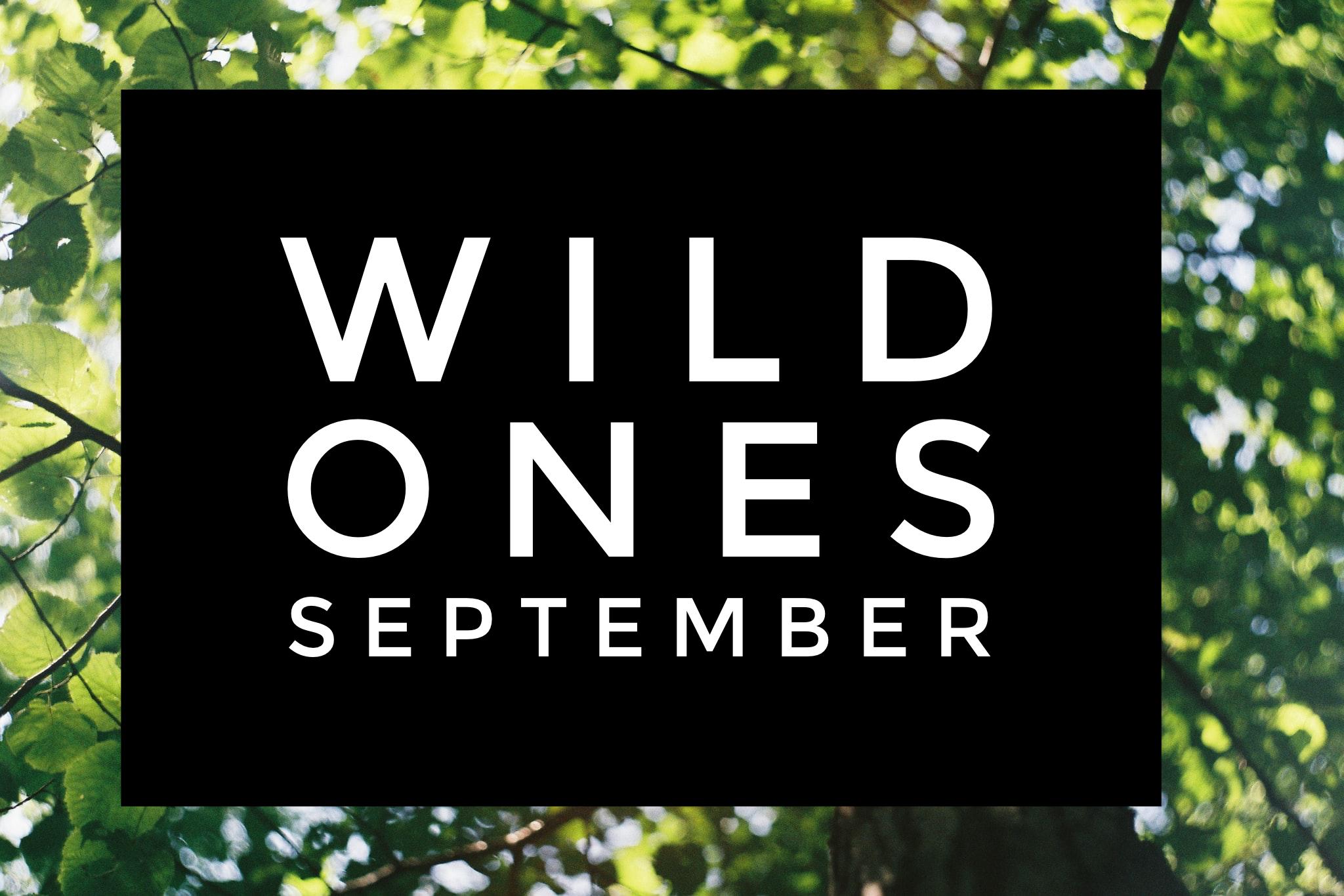 Wild Ones - Timbernook of Northeast Oklahoma