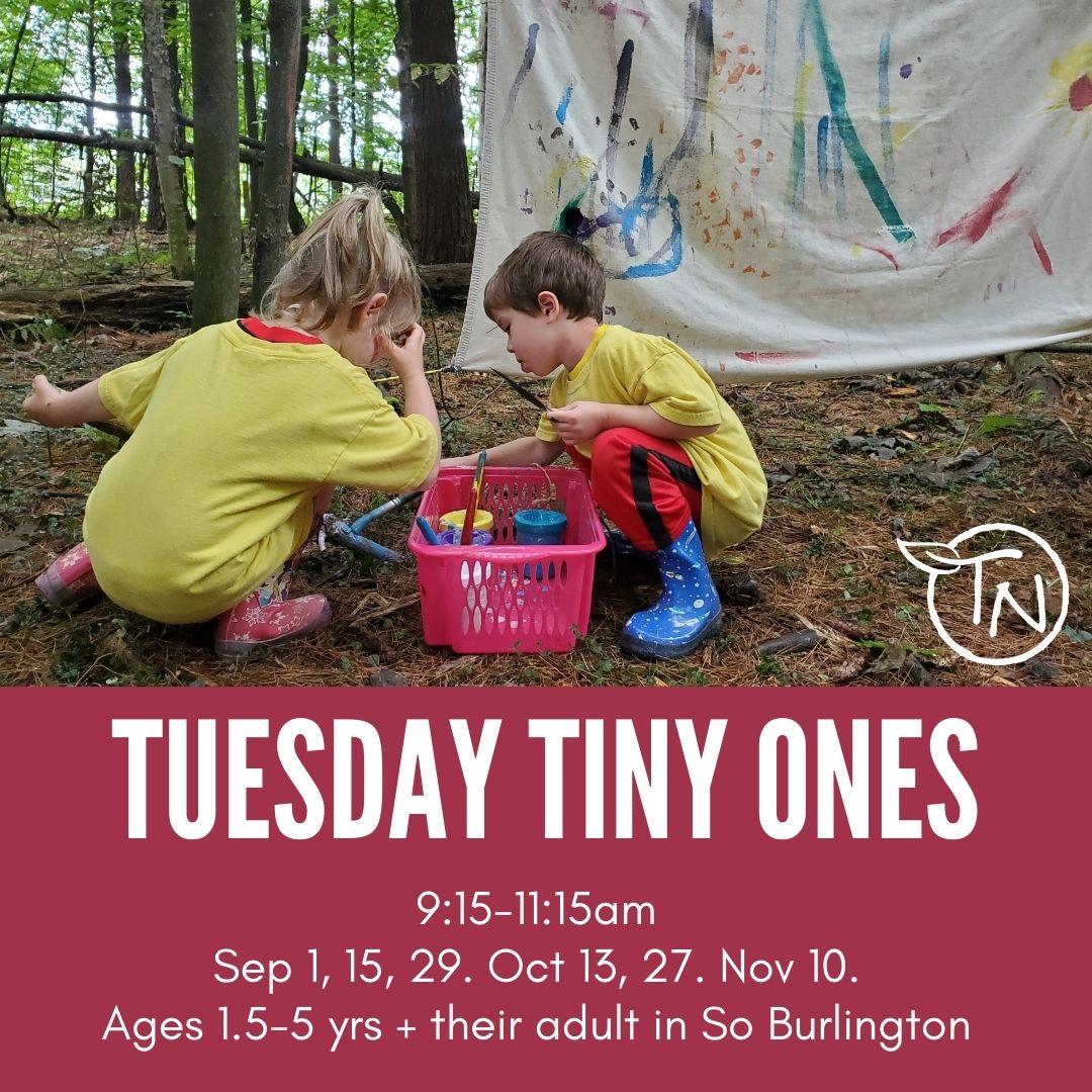Tuesday Tiny Ones (So Burlington - TimberNook of Greater Burlington
