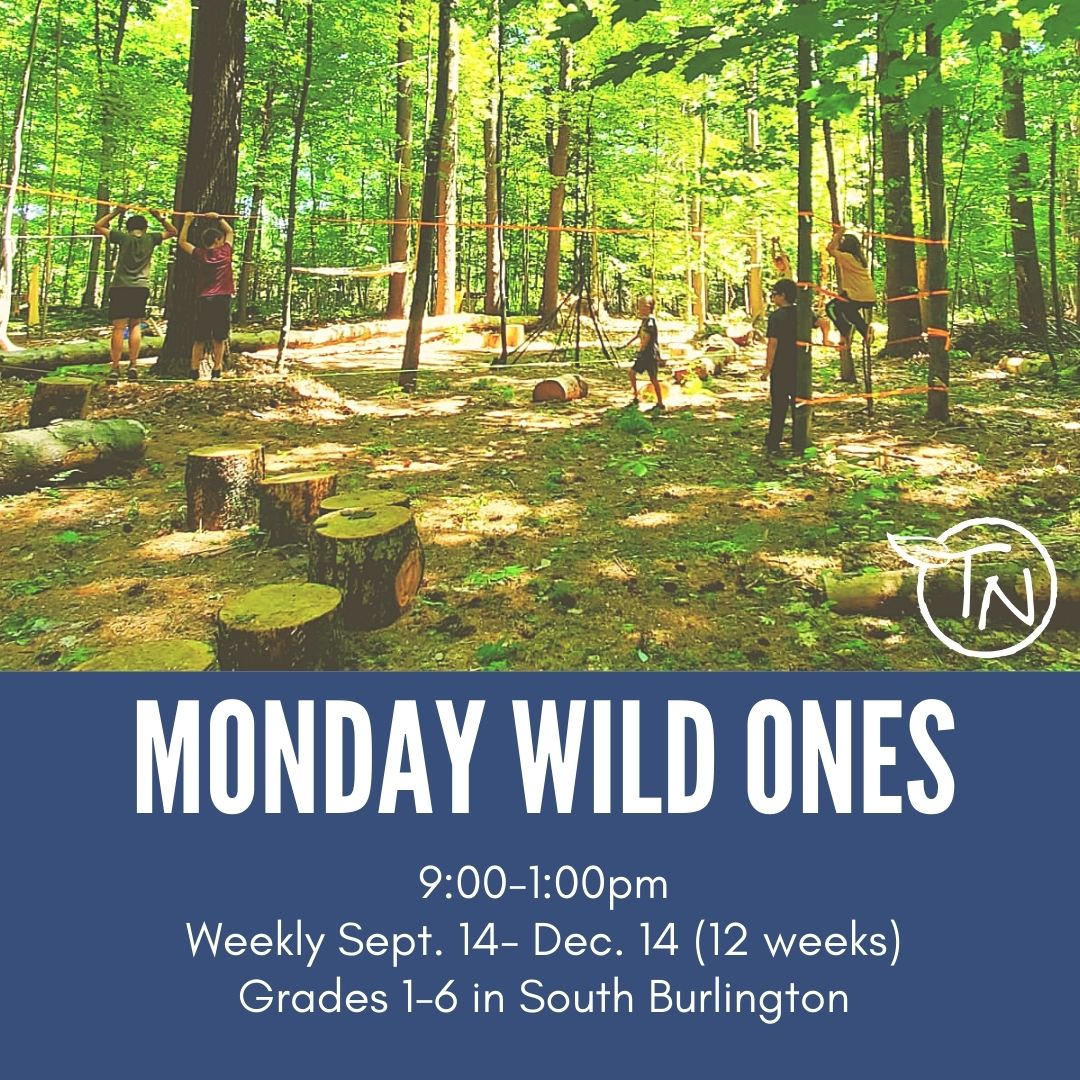 Protected: Monday Wild Ones (So Burlington) – TimberNook of Greater Burlington