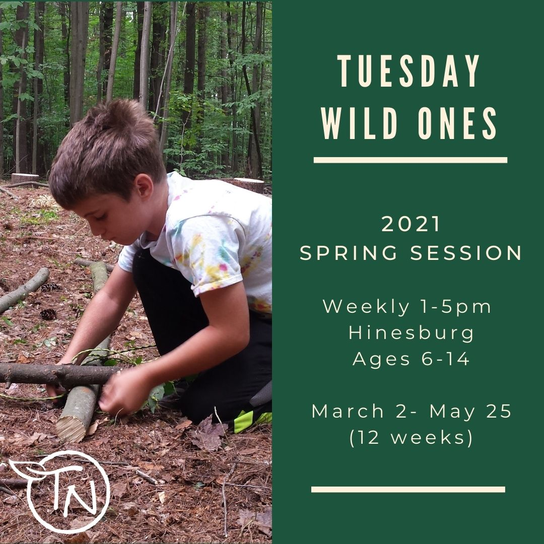 Protected: Tuesday Wild Ones (Hinesburg)- TimberNook of Greater Burlington