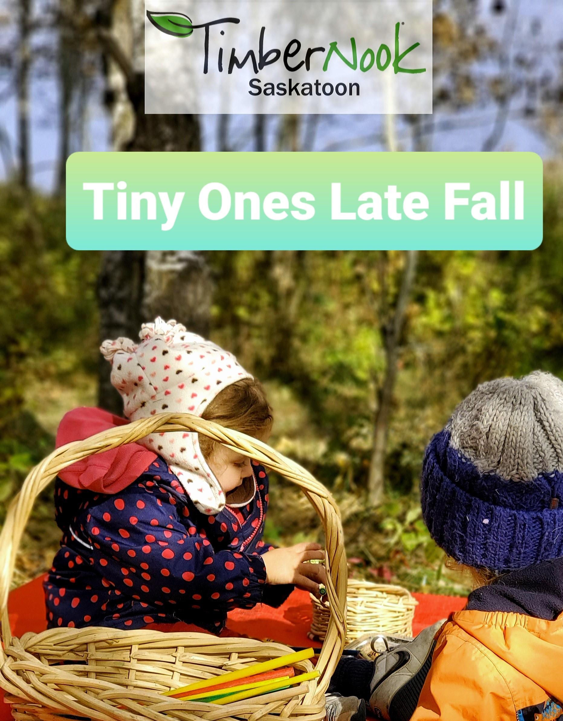 Tiny Ones - TimberNook Saskatoon