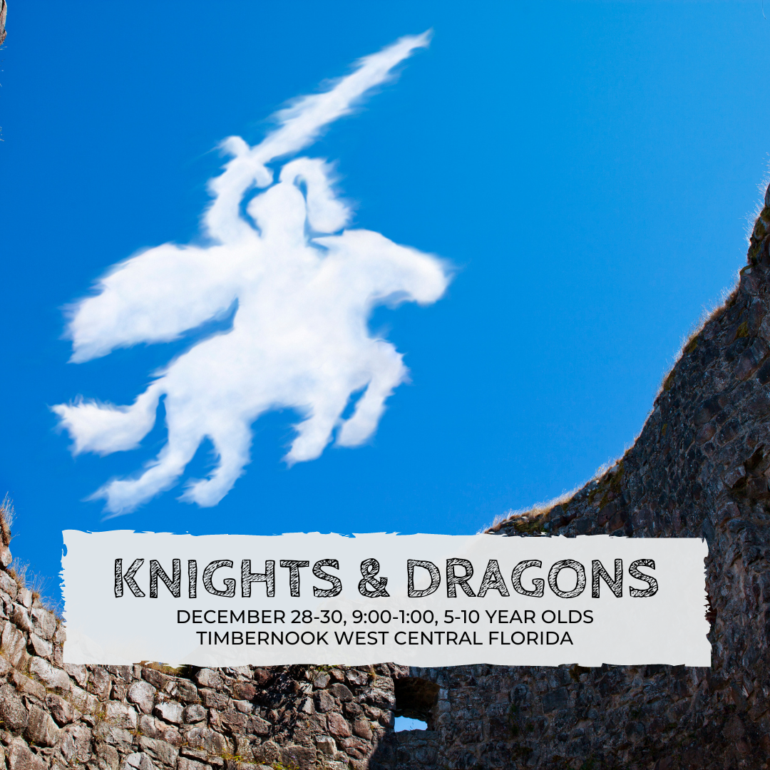 Knights & Dragons - Winter Break - TimberNook West Central Florida