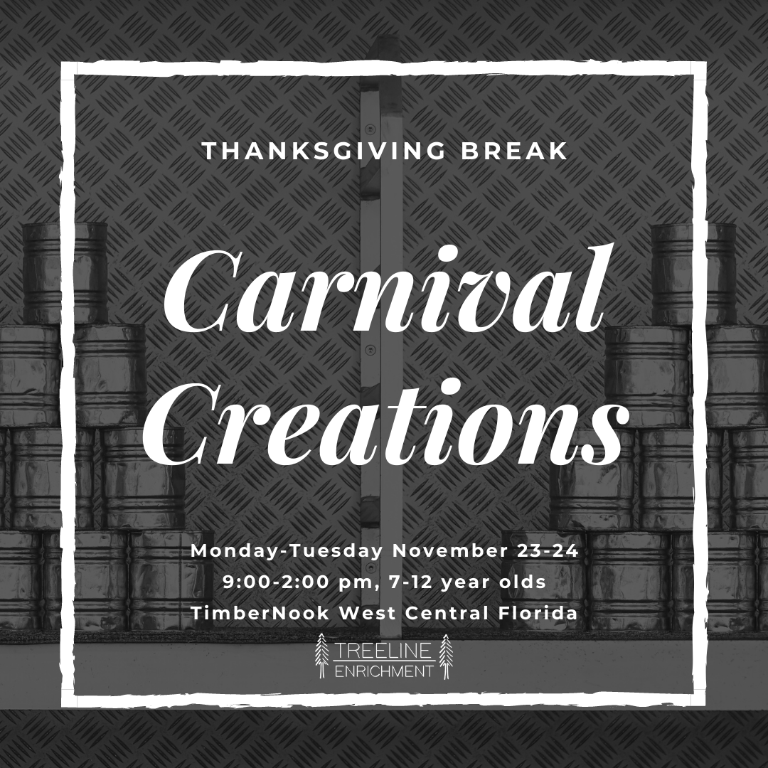 Carnival Creations - Thanksgiving Break - TimberNook West Central Florida