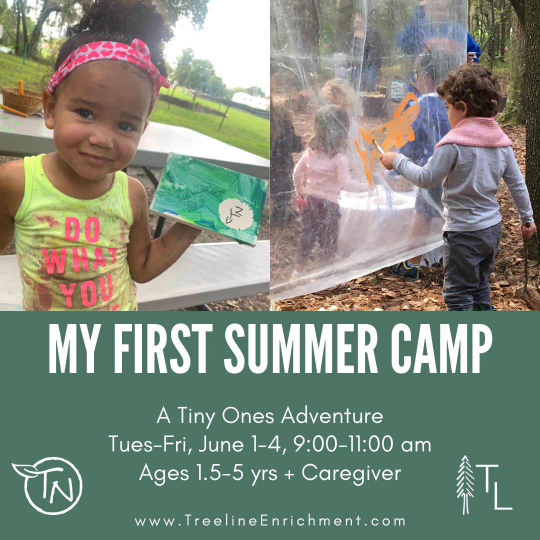 My First Summer Camp - Jun 1-4 - TimberNook West Central Florida