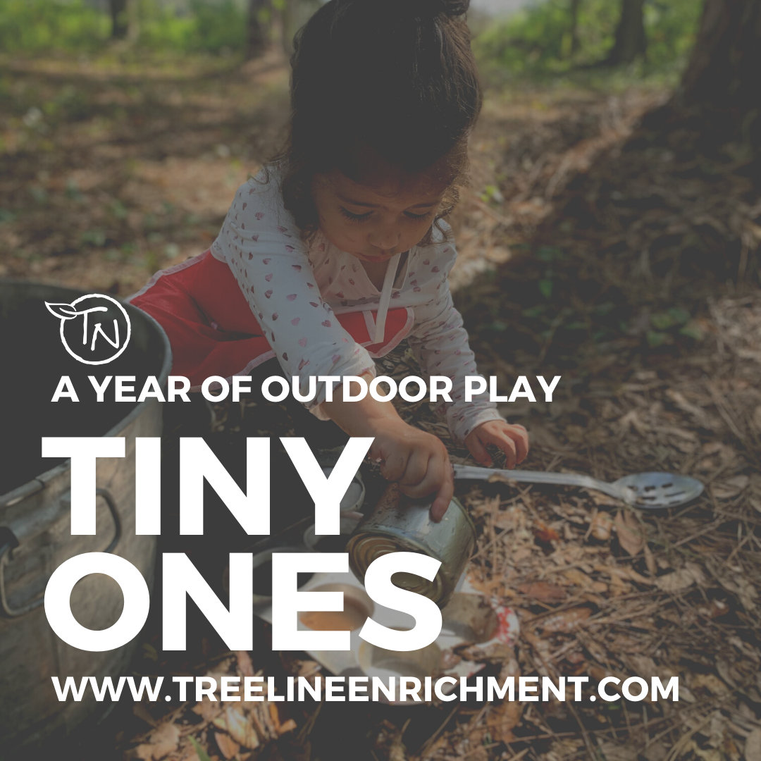 Tiny Ones - 2021-2022 Year - TimberNook West Central Florida