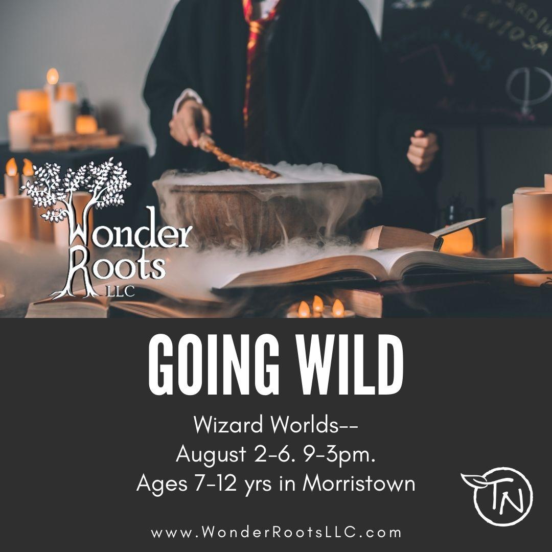 Going Wild (Morristown) TimberNook of Greater Burlington