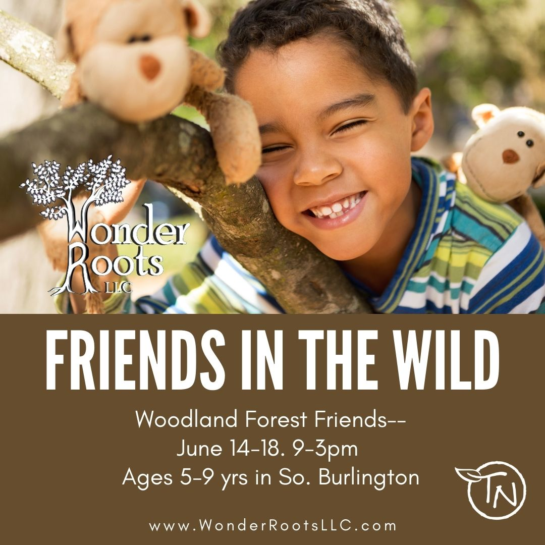 Friends in the Wild – TimberNook of Greater Burlington