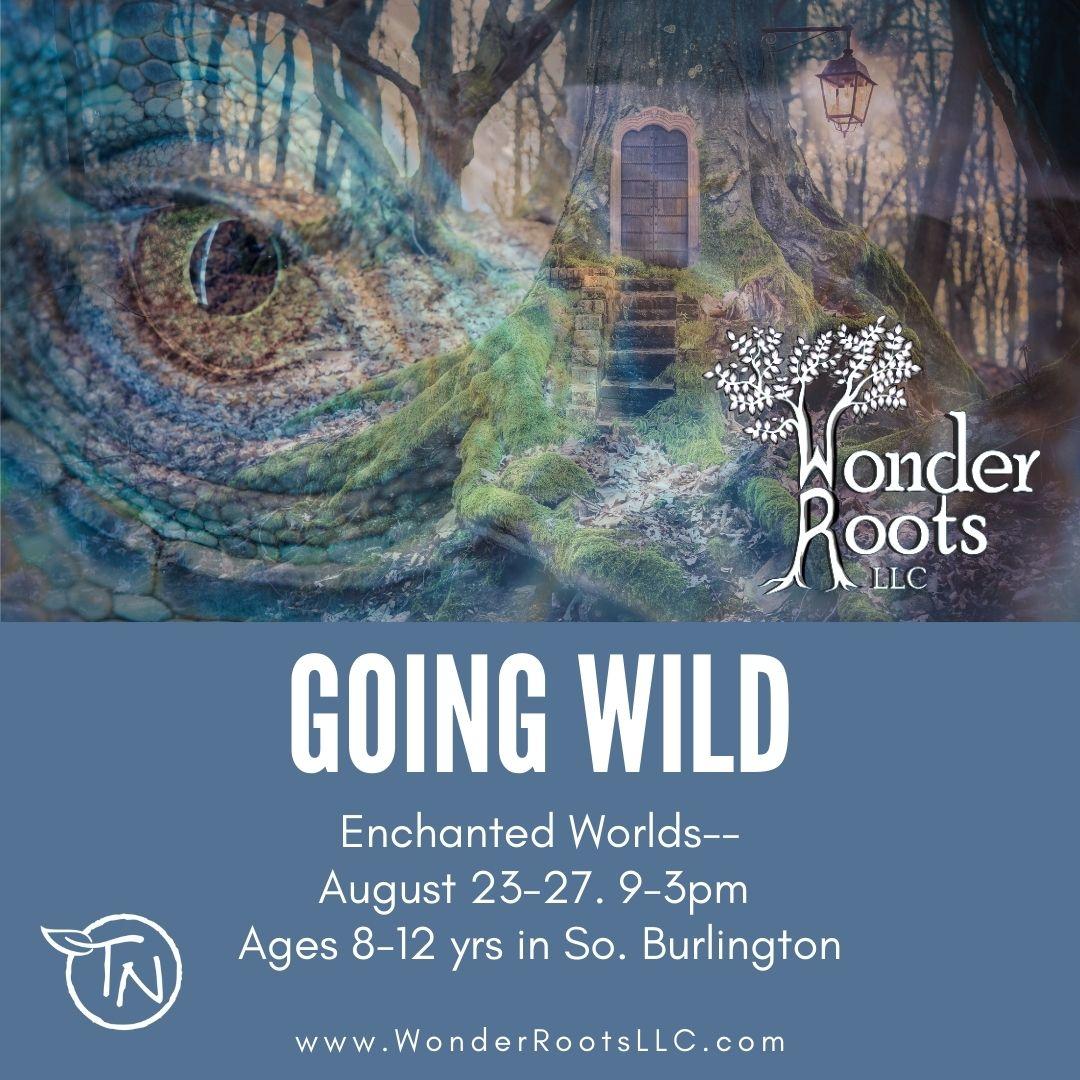 Going Wild – TimberNook of Greater Burlington