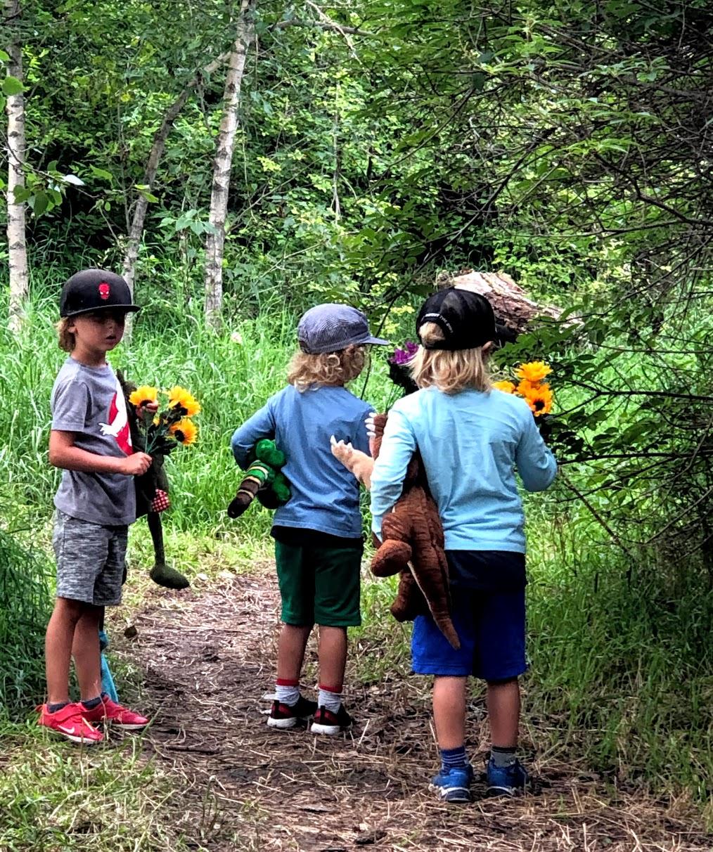 Storybook - Summer Camp (ages 4-8), July 5-9
