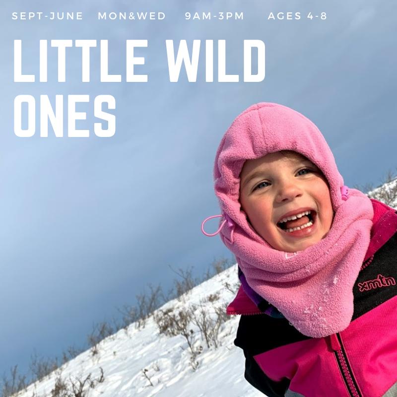 Little Wild Ones – TimberNook Saskatoon