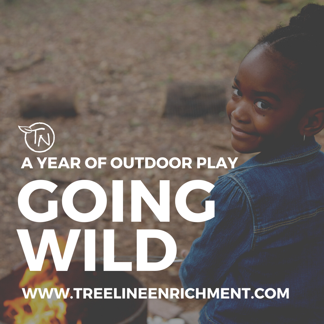 Going Wild - 2021-2022 Year - TimberNook West Central Florida