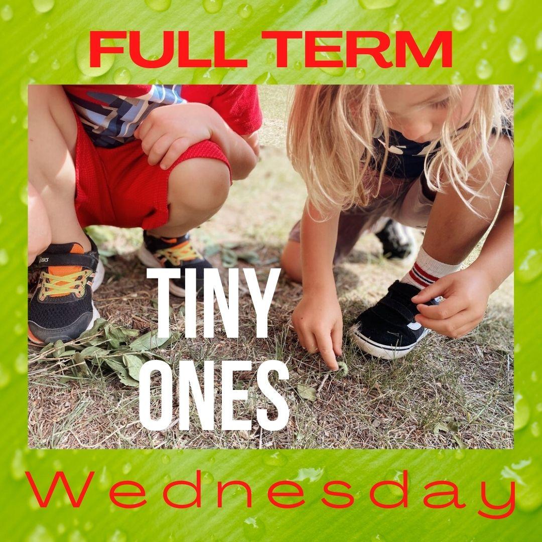 Tiny Ones – FULL TERM 10 Weeks Wednesdays – Timbernook Hunter Valley