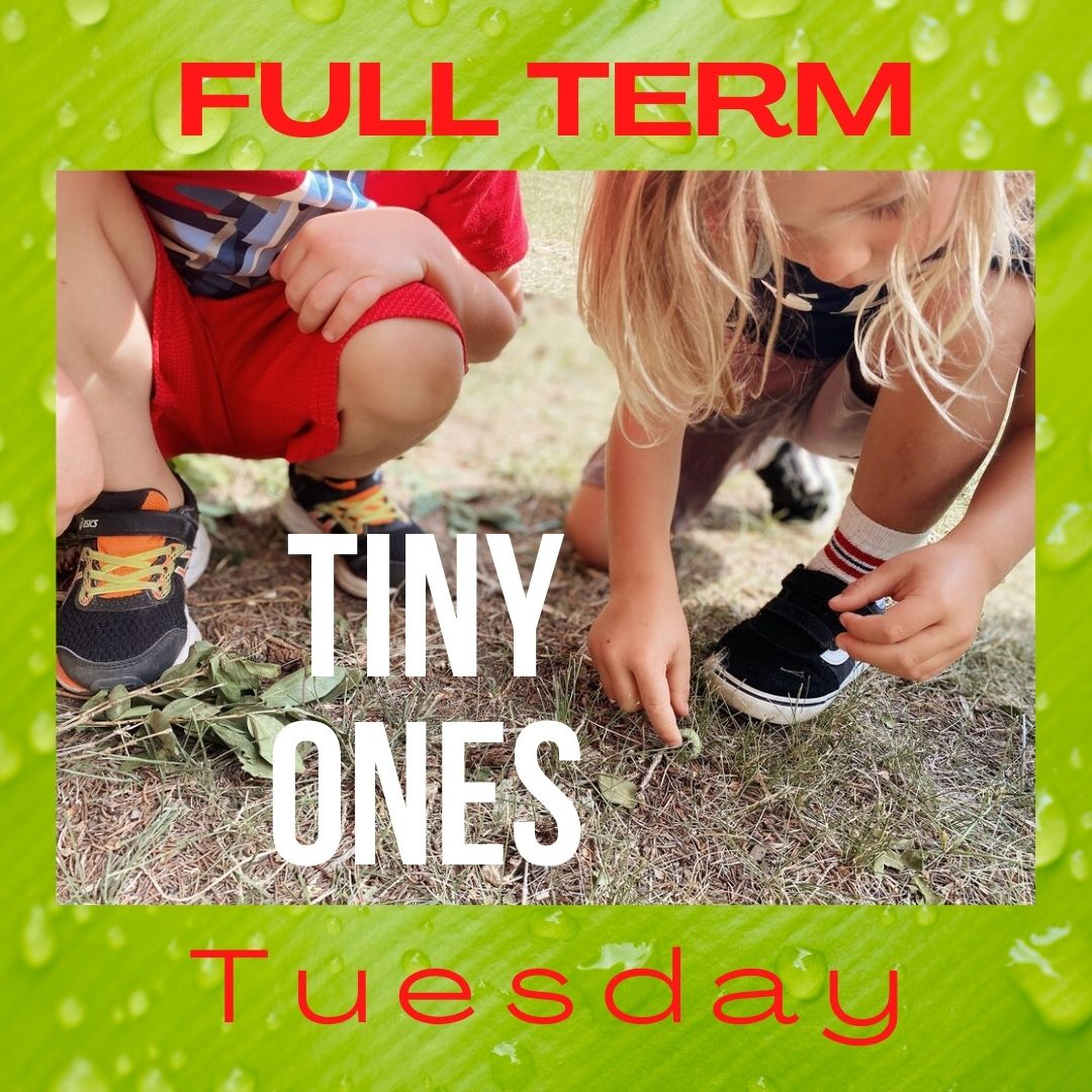Tiny Ones – FULL TERM 10 Weeks Tuesdays – Timbernook Hunter Valley