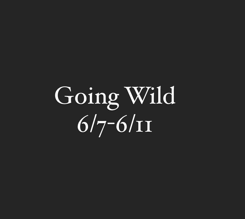 Going Wild - TimberNook Northeast Florida