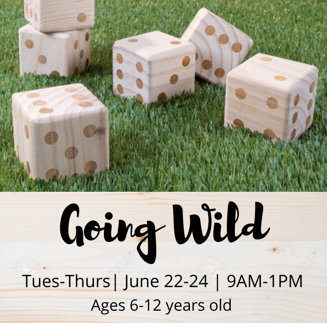 Going Wild - TimberNook of Greater Omaha