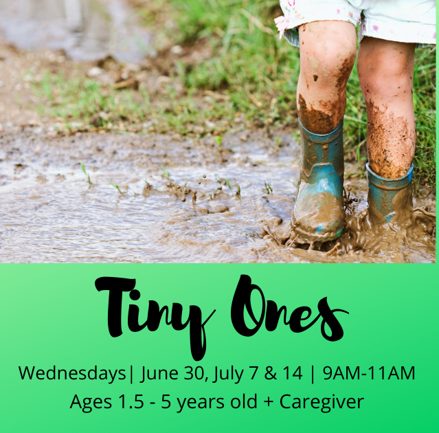 Tiny Ones - TimberNook of Greater Omaha
