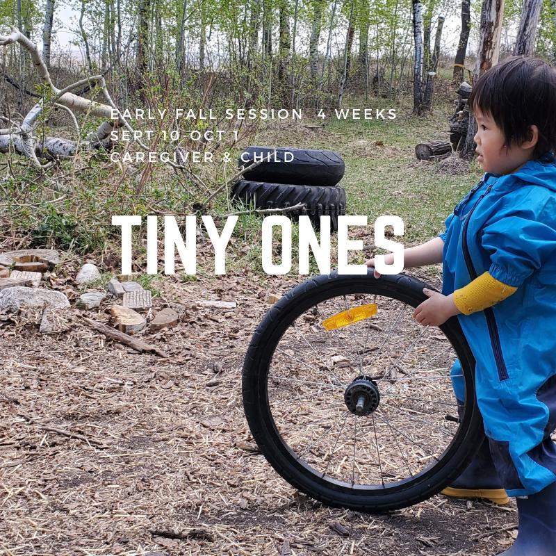 Tiny Ones - TimberNook Saskatoon -Early Fall Mornings