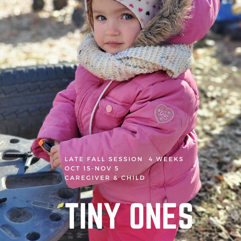 Tiny Ones - TimberNook Saskatoon- Late Fall