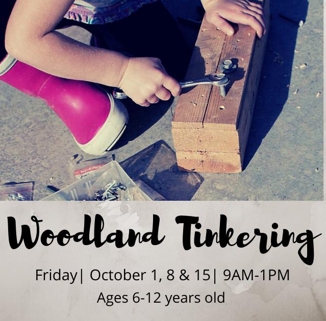 Woodland Tinkering - TimberNook of Greater Omaha